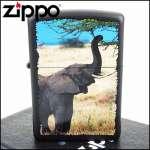 Фото Зажигалка Zippo Elephant 28666 | Интернет магазин Bird.in.ua